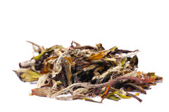 Chinnese white tea Royalty Free Stock Photography