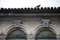 Chino πορτογαλικά Στοκ φωτογραφίες με δικαίωμα ελεύθερης χρήσης