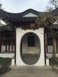 chino Foto de archivo