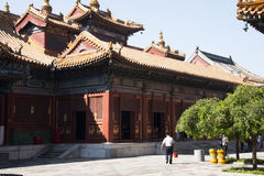 Chino asiático, Pekín, edificios históricos, Lama Temple Imagen de archivo libre de regalías