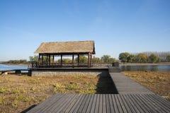 Chino asiático, Pekín, grande Canale Forest Park, el camino del tablón, la cabaña de madera Fotografía de archivo libre de regalías