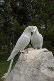 Chino asiático, Pekín, parque internacional de la escultura, loros, paraíso Imagen de archivo libre de regalías