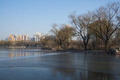 Chino de Asia, parque de Pekín, lago Longtan, paisaje del invierno Imagen de archivo libre de regalías