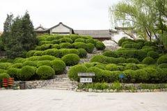 Chino de Asia, Pekín, China Minzu Yuan, arquitectura de paisaje, plantas esféricas Fotos de archivo