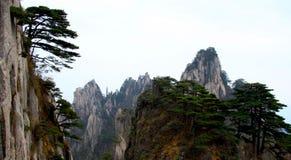 Chino de Huangshan Foto de archivo