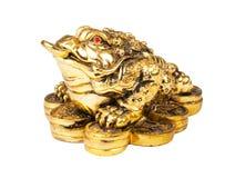 Chino Feng Shui Frog Fotografía de archivo
