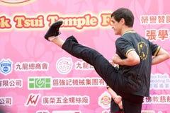 Chino Kung Fu (Wing Chun) fotografía de archivo libre de regalías