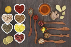 Chino medicinal Herb Teas Imagen de archivo libre de regalías