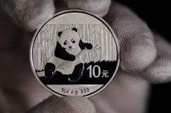 Chino Panda Silver Coin White Glove Fotografía de archivo libre de regalías