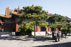Chinois asiatique, Pékin, bâtiments historiques, Lama Temple Image stock