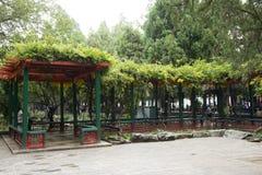 Chinois asiatique, Pékin, le palais d'été, rotin vert et hangar en bois Photo libre de droits