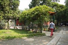 Chinois asiatique, Pékin, le palais d'été, rotin vert et hangar en bois Photo stock