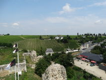 Chinon: vineyards and knights templar flags. View from the Chinon castle:  vineyards, knights templar flags and houses Stock Photography