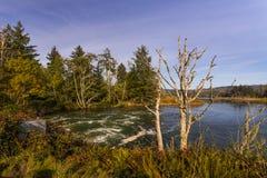 Chinook rzeka, Waszyngton Zdjęcia Royalty Free