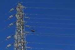 Chinook 47 sopra il cielo del Giappone fotografia stock libera da diritti