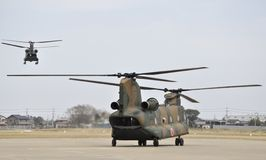 Chinooks Stock Photos
