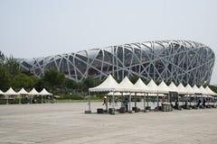 Chinês asiático, estádio de nacional de Pequim, o ninho do pássaro, Fotos de Stock Royalty Free