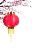 chinse νέο έτος διακοσμήσεων Στοκ Εικόνα