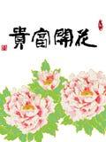 牡丹开放祝贺Chinses 库存照片