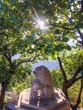 chiny lwa zwolnień kamień Nanjing Obrazy Royalty Free
