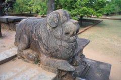 chiny lwa zwolnień kamień Nanjing Obraz Stock