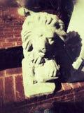 chiny lwa zwolnień kamień Nanjing Obrazy Stock