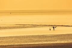 Chiny morze wschodnio-chińskie nabrzeżna plażowa sceneria Zdjęcia Stock