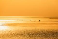 Chiny morze wschodnio-chińskie nabrzeżna plażowa sceneria Zdjęcie Stock