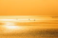 Chiny morze wschodnio-chińskie nabrzeżna plażowa sceneria Obrazy Stock