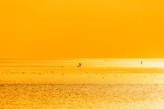 Chiny morze wschodnio-chińskie nabrzeżna plażowa sceneria Obrazy Royalty Free