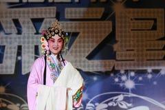 chiny opery Pekin Zdjęcie Royalty Free