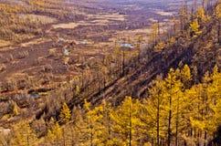 Chiny Wewnętrzny Mongolia Arxan jesieni sceneria Zdjęcia Royalty Free