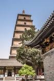 Chiny, XI. ` wilder pagodowy gigantyczny gęsi obrazy stock