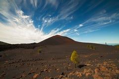 Chinyero. Volcano, Tenerife.Canary Islands Royalty Free Stock Photography