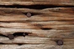 Chiodi arrugginiti in vecchio legno Fotografie Stock