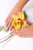 Chiodi con il fiore Immagine Stock