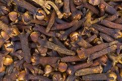Chiodi di garofano Fotografie Stock Libere da Diritti