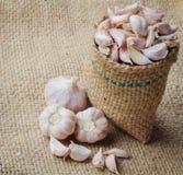 Chiodi di garofano di aglio Fotografia Stock