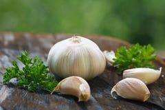 Chiodi di garofano di aglio e lampadina dell'aglio Immagini Stock Libere da Diritti