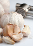 Chiodi di garofano di aglio fresco immagine stock libera da diritti