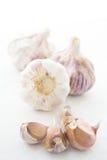 Chiodi di garofano di aglio sopra bianco Fotografie Stock Libere da Diritti