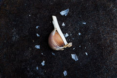 Chiodi di garofano di aglio sul nero immagine stock libera da diritti