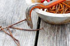 Chiodi ed estrattore di chiodo arrugginiti Fotografia Stock