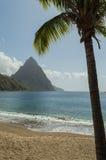 Chiodo da roccia e palma in Santa Lucia Fotografie Stock