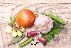Chiodo di garofano e cipolla di aglio Fotografia Stock