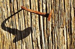 Chiodo dispari Fotografia Stock Libera da Diritti