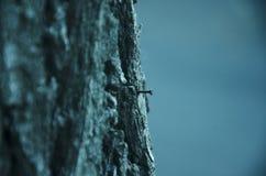 Chiodo nell'albero Fotografia Stock