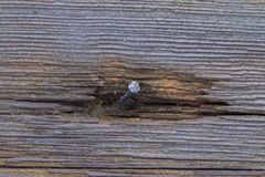 Chiodo piegato in una parete di legno Fotografia Stock Libera da Diritti