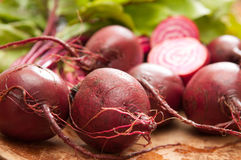 Chioggia or candy cane beets. Red striped chioggia or sweet candy cane beets farm fresh Royalty Free Stock Photos