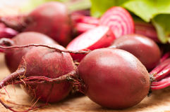 Chioggia or candy cane beets. Red striped chioggia or sweet candy cane beets farm fresh Royalty Free Stock Photography